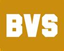 BVS Company